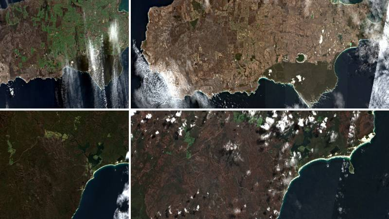 Satellite footage shows how fire scars are healing
